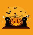 halloween card with pumpkin vector image vector image