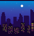 night silhouette of buildings with colorful vector image