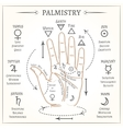 Palmistry mystical reading vector image vector image