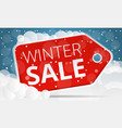red tag winter sale concept banner cartoon style vector image