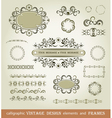 Set of calligraphy elements vector image
