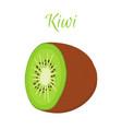 tropical fruit exotic kiwi slice of kiwi vector image vector image