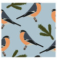 Seamless pattern bullfinch blue vector image