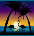two silhouettes of flamingos in the background of vector image