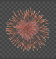beautiful heart-firework red romantic firework vector image