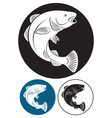 cod fish vector image vector image