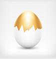 golden egg in white shell vector image vector image