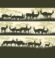 horizontal banners of wild antelope in african vector image
