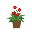 icon in flat design geranium vector image vector image