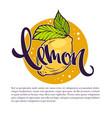 lemon drinks for your label emblem vector image vector image