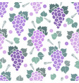 scandinavian style purple grapes seamless pattern vector image