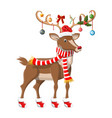 cute deer with antlers scarf holly bow baubles vector image