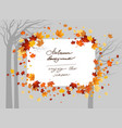 fall maple trees vector image