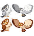 Four owls vector image vector image