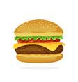 hamburger with cheese tomato and salad vector image