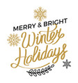 merry and bright winter holidays poster vector image