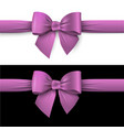 realistic purple bow with ribbon on white and on vector image vector image