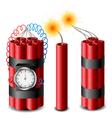 Dynamite set vector image vector image