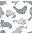 pretty seals seamless pattern marine vector image vector image