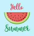 summer word with fruit watermelon vector image vector image