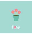 Three pink flowers in pot Love card vector image