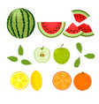 berries and fruits watermelon orange lemon vector image vector image