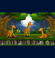 cartoon three giraffes enjoying at night lands vector image vector image