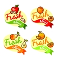 fresh juice emblem set vector image