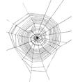 hand drawn spiderweb vector image vector image