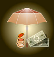 insurance concept an open umbrella protects money vector image
