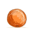 Sketch of orange for your design vector image vector image