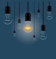 hanging light bulbs with a luminous on a dark vector image