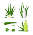 realistic detailed 3d aloe vera product set vector image