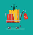 sales and discounts vector image