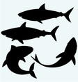Set shark vector image vector image