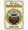 wild animal decorative poster with grizzly vector image vector image