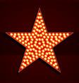 broadway style light bulb star shape vector image vector image
