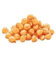 Chickpeas Clipart vector image vector image