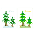Fir tree in summer and winter vector image