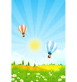 Landscape with Trees and Hot Air Balloon vector image vector image