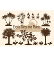 Palm Trees Flowers and Grass Silhouettes vector image vector image