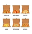Set whole pizza in open white box Pepperoni vector image vector image