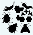 Species of insects vector image vector image