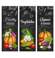 vegetables farm harvest organic food banners vector image vector image