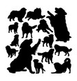 bernese mountain dog silhouettes vector image vector image