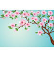 blossoms tree vector image