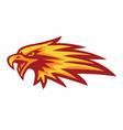 eagle phoenix burning fire logo flame vector image