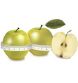 green apple measured the meter vector image