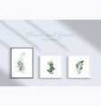 set botanic and leaves in watercolor vector image vector image