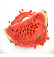 watermelon juice fresh fruit 3d realism icon vector image vector image